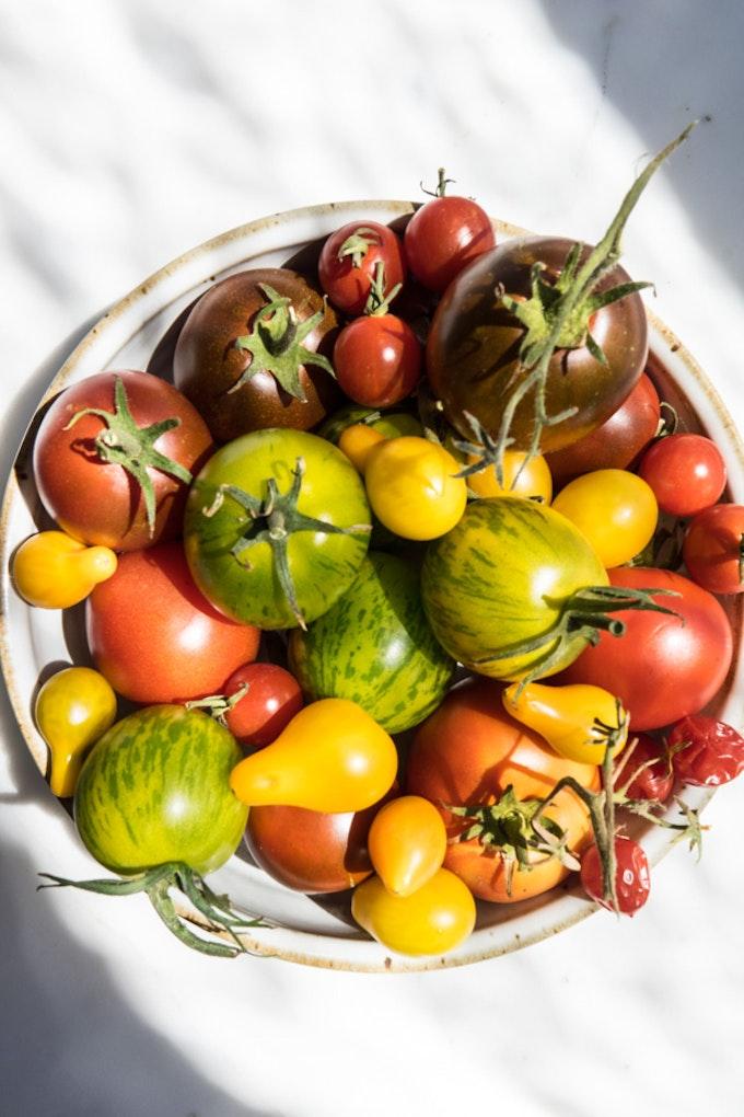 All-The-Tomatoes & Pasta Salad Recipe - 101 Cookbooks