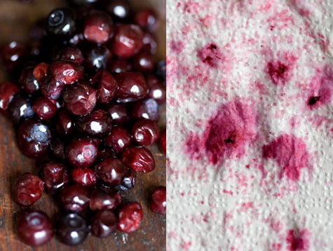 Berries for Coffee Cake