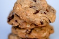 Great Chocolate Chip Cookies from David Lebovitz's Great Book of Chocolate recipe