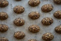 4 o'clock No-bake Energy Bites recipe