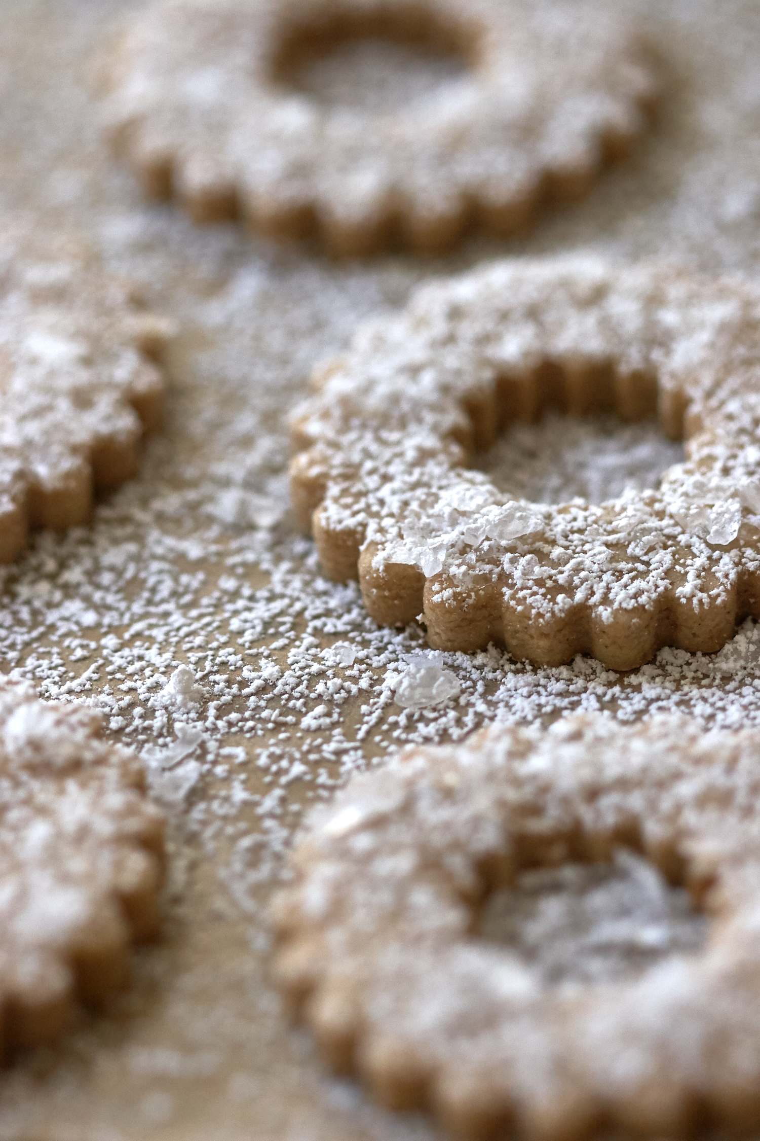 15 Festive Christmas Cookie Recipes
