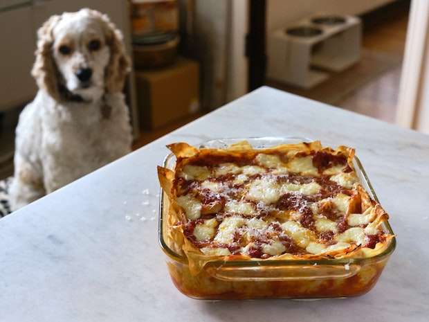 Lasagna in a Glass Baking Dish on a Marble Counter Top