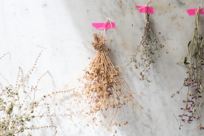 How to Dry Herbs Recipe