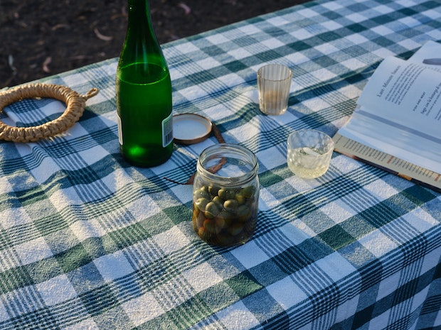 Items on a Picnic Table with Green Plaid Tablecloth