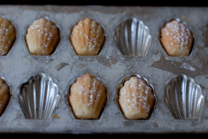 Madeleine Cake Recipe Youtube