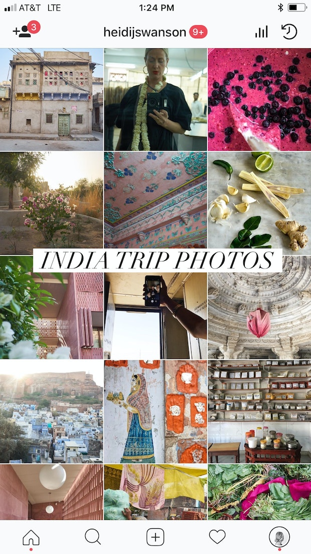 Food, Flowers, and Photography - Traveling Around India
